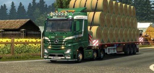 ballen-transport-ch-skin_2