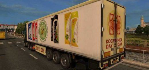 day-2-day-care-shampoo-trailer-ets2-1-30_2