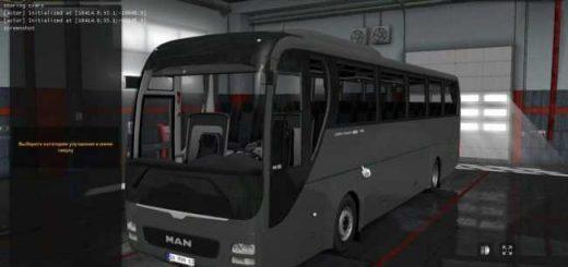 6671-man-lion-coach_1