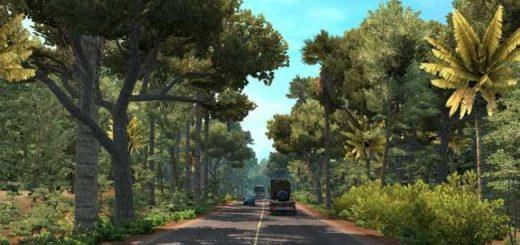 tropical-environment-v3-9_1