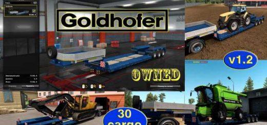 ownable-overweight-trailer-goldhofer-v1-2_1
