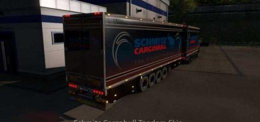 schmitz-cargobull-tandem-skin_1