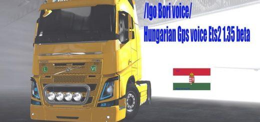 Hungarian-Gps_58QVX.jpg