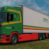 bdf-tandem-truck-pack-v138-00-1-38_1