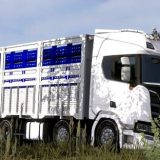 Scania-Next-Gen-R450-1_842W0.jpg